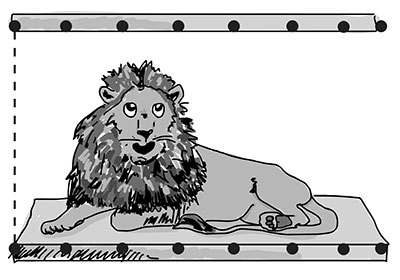 lion_cage_small